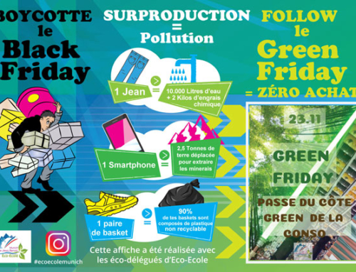 Green Friday au Lycée Jean Renoir